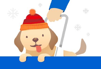 un chien de Noel.